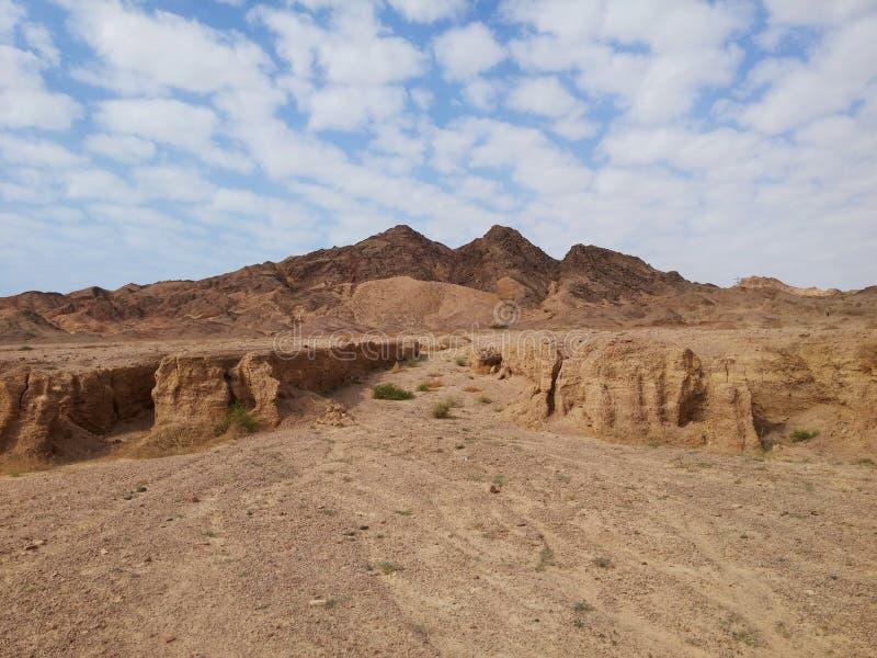 Bergen van Ras Mohamed Resort, Sinai, Egypte royalty-vrije stock afbeelding