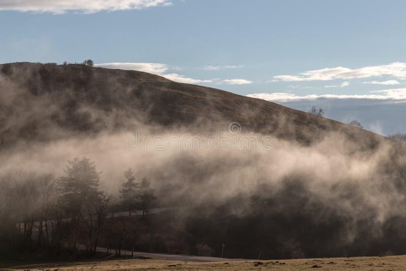 Bergen, wolk en bomen stock afbeeldingen