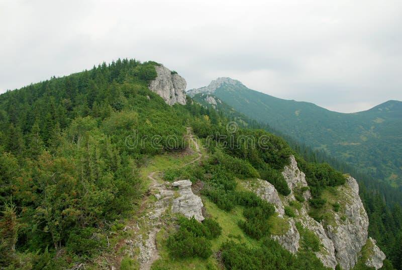 Bergenlandschap in Slowakije royalty-vrije stock foto