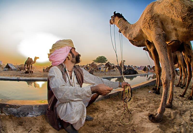 Berger de chameau photos stock