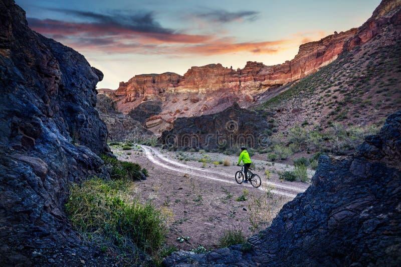 Bergfietser bij de woestijn royalty-vrije stock foto