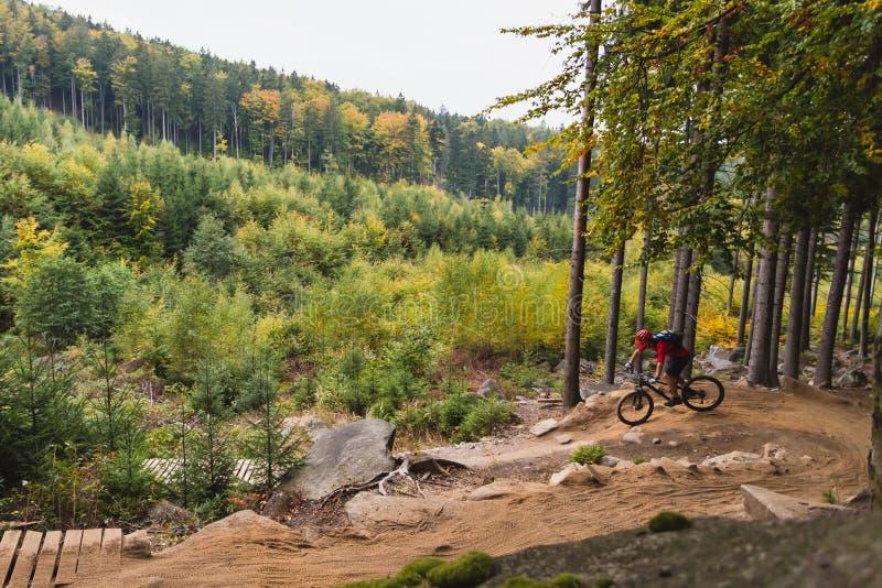 Bergfietser het berijden het cirkelen in de herfstbos stock foto's