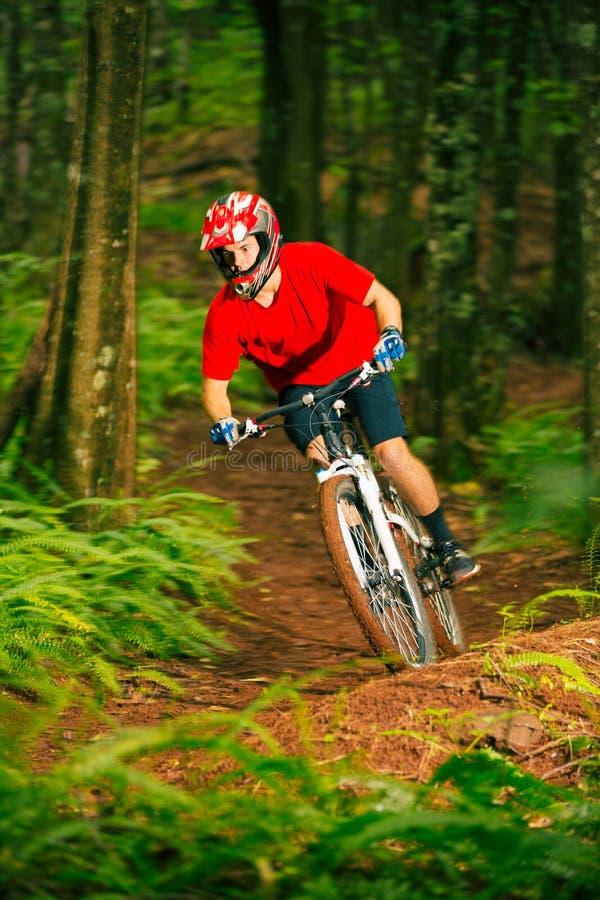 Bergfietser het Berijden onderaan Forest Trail stock foto's
