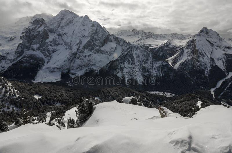 Bergfjällängar i Italien royaltyfria bilder