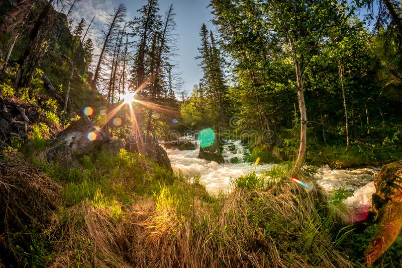Bergflod i Barguzin naturreserv royaltyfri fotografi