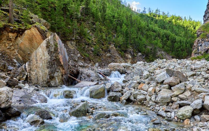 Bergflod i klyftan Ryssland fotografering för bildbyråer