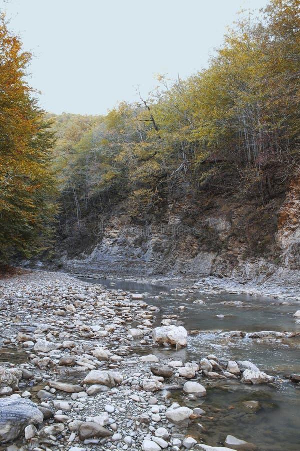 Bergflod i Lago-Naki fotografering för bildbyråer