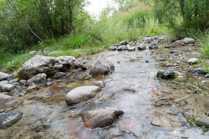 Bergflod i natur arkivfoton