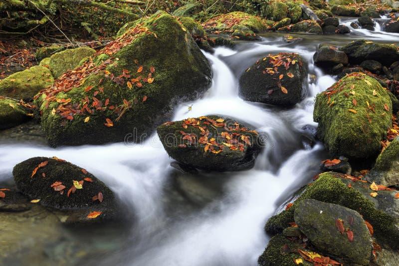 Bergflod i sen höst royaltyfri bild