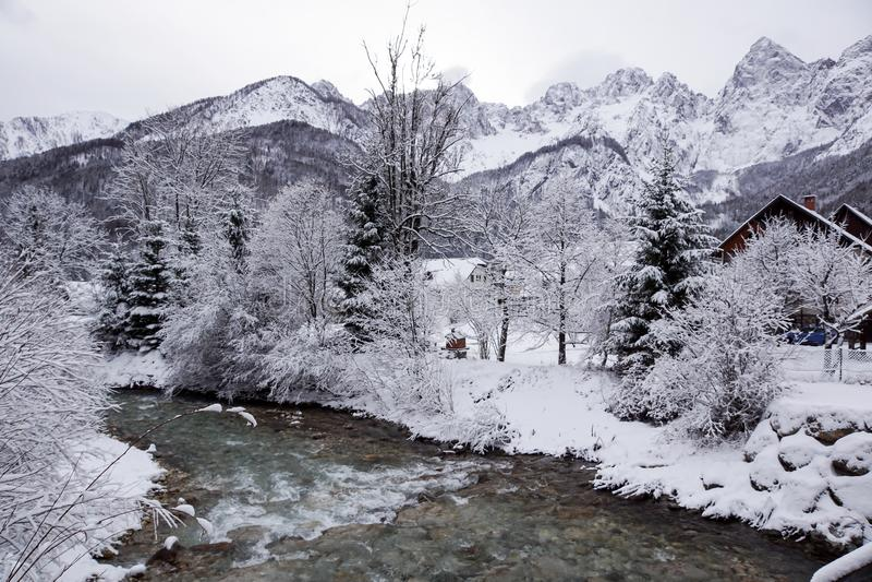 Bergflod i vinterlandskap övervintrar trees för snow för sky för lies för frost för mörk dag för bluefilialer fotografering för bildbyråer