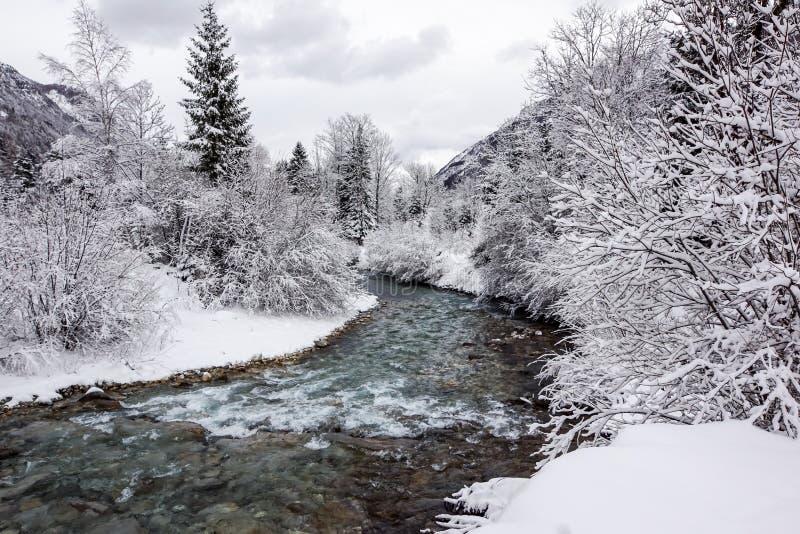 Bergflod i vinterlandskap övervintrar trees för snow för sky för lies för frost för mörk dag för bluefilialer royaltyfria bilder