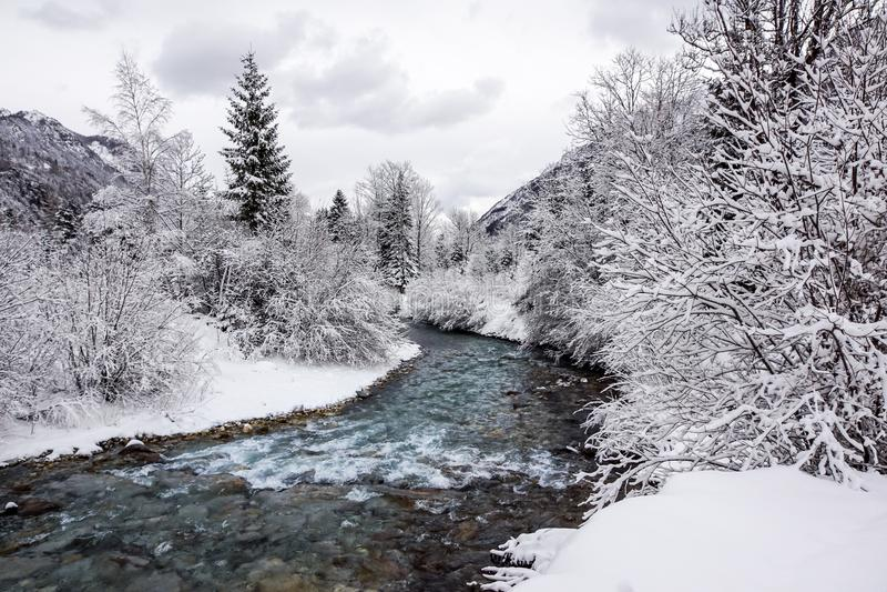 Bergflod i vinterlandskap övervintrar trees för snow för sky för lies för frost för mörk dag för bluefilialer royaltyfri fotografi