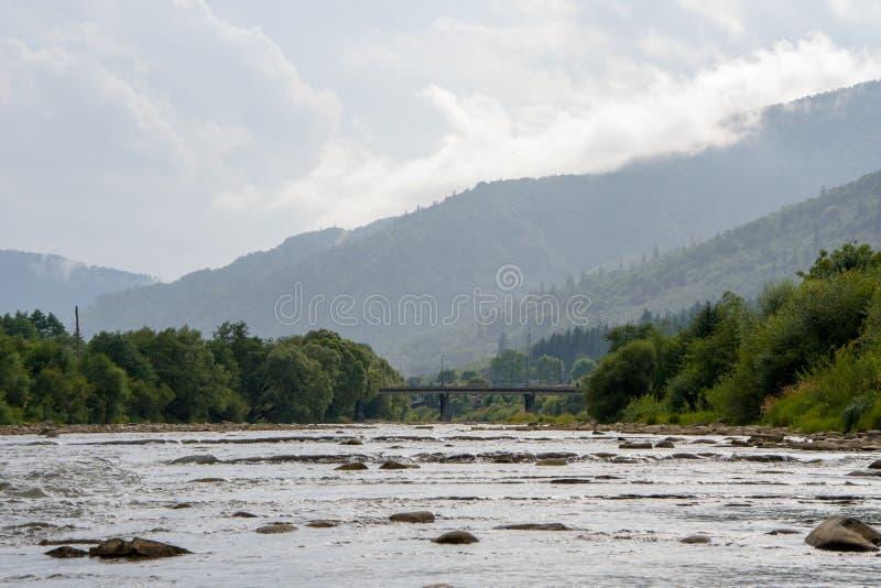Bergflod med forsar och klyftor, lutningar med barrträd som bubblar strömmen av vatten arkivbild