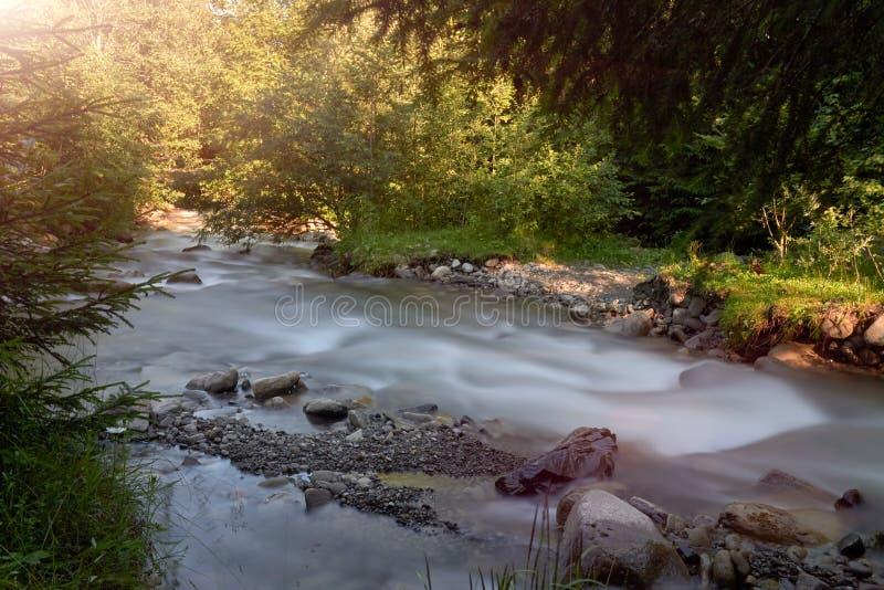 Bergflod på en lång exponering i sommaren i de Carpathian skogarna, ett härligt landskap arkivfoto