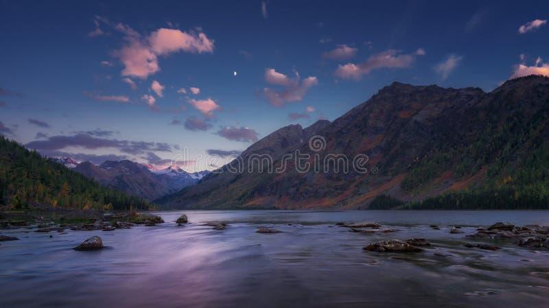 Bergflodsikt på tidig solnedgång med blå himmel och rosa moln, höglands- natur Autumn Landscape för Altai berg royaltyfri bild