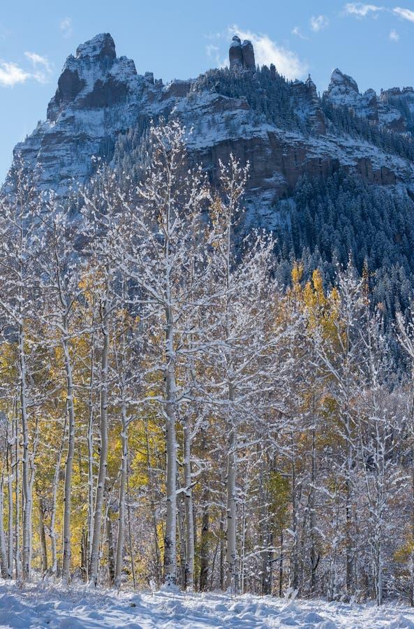 Berggipfel Ridge mit Aspen Trees Back Lit lizenzfreies stockfoto