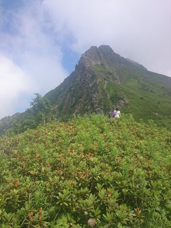 Berghang mit Drahtseilbahnen und Skisteigungen an einem bewölkten Sommertag, Nebel, Wolken Schwarzer Pyramiden-Berg, Krasnaya Pol lizenzfreie stockfotos