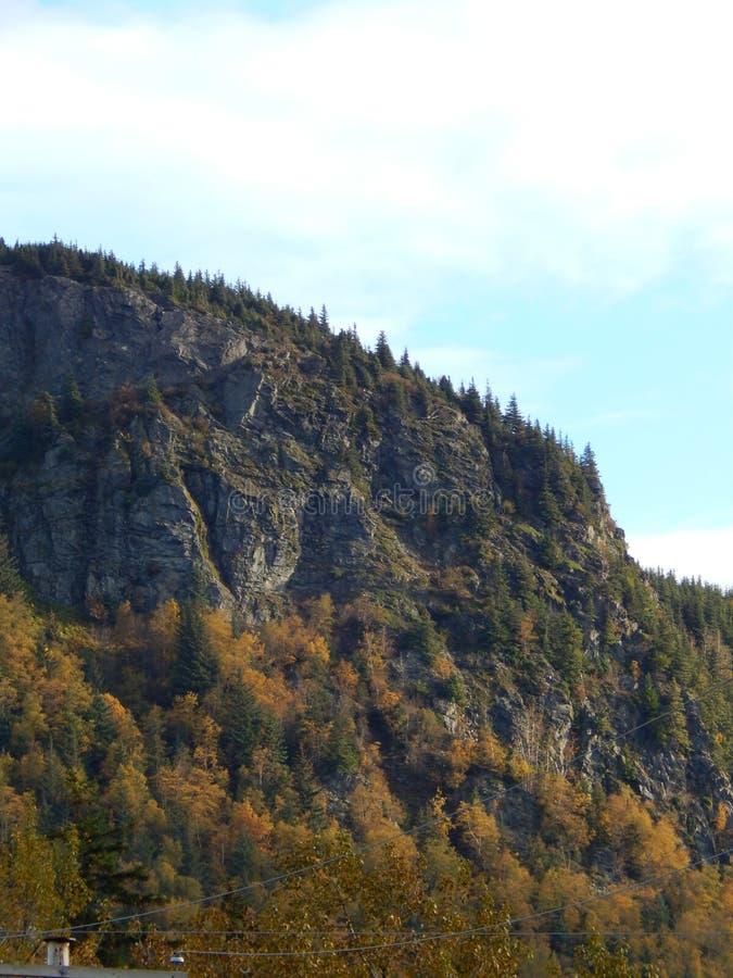 Berghelling met dalingskleur stock afbeeldingen
