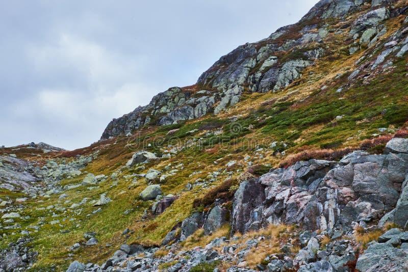 Berghelling met gras en stenen royalty-vrije stock foto's
