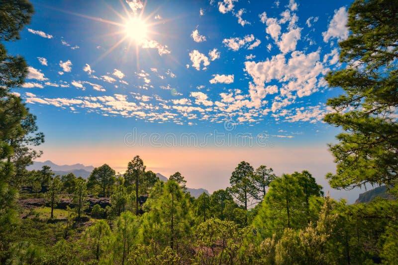 Berghellingslandschap in het natuurreservaat van Tamadaba op het eiland van Gran Canaria, Spanje royalty-vrije stock foto's