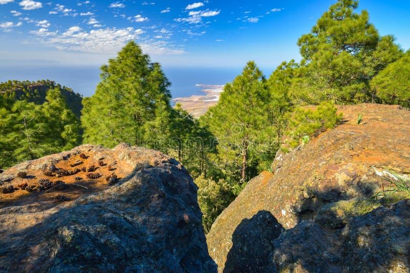 Berghellingslandschap in het natuurreservaat van Tamadaba op het eiland van Gran Canaria, Spanje stock afbeelding
