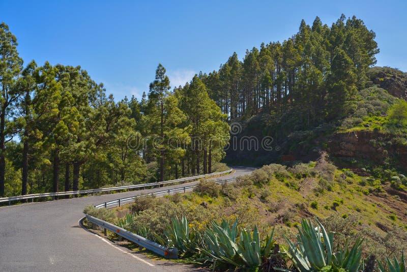 Berghellingsweg in Gran Canaria, Spanje stock afbeelding