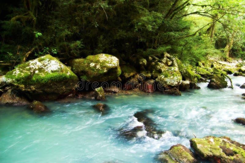 bergig flod royaltyfri fotografi