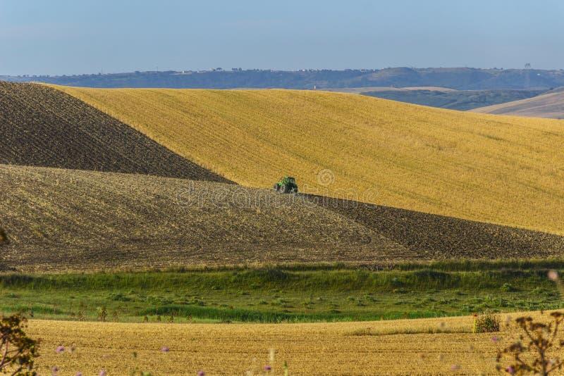 Bergig lantlig liggande Mellan Apulia och Basilicata; ploga med traktoren i jordbruks- land efter skörden - ITALIEN royaltyfri bild
