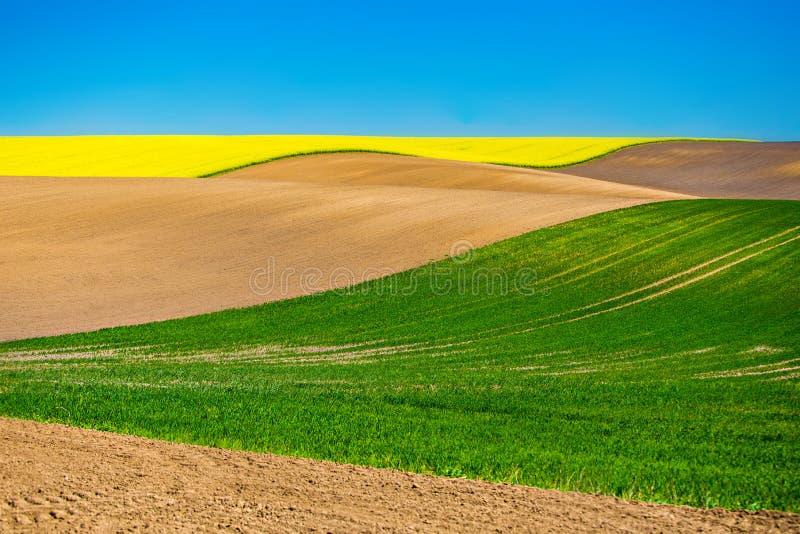 bergig liggande Lantgårdländer odlade i landsbygd Cozla begrepp royaltyfria bilder