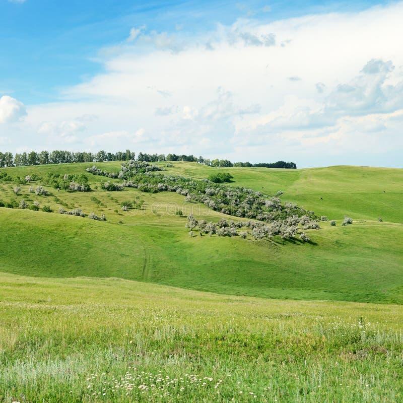 Bergiges Gelände stockbilder