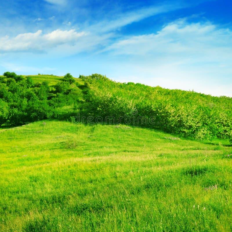 Bergiges Gelände stockbild
