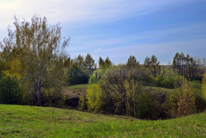 bergigt fält arkivbild