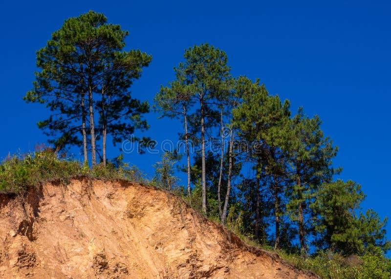 Bergjordskred i ett miljömässigt farligt område Stora sprickor i jord, nedstigning av stora lager av jord som blockerar vägen Så royaltyfria foton