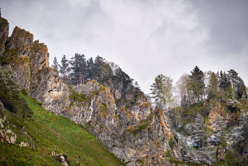 Bergketen Iolgo over Katun-rivier in Altai, Rusland royalty-vrije stock foto's