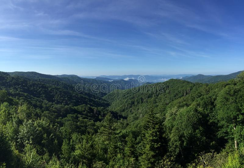 Bergketen van een groen bos stock afbeelding