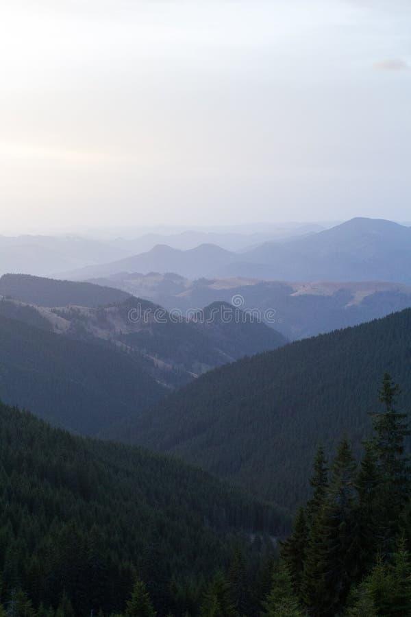 Bergketens, de Karpaten stock fotografie