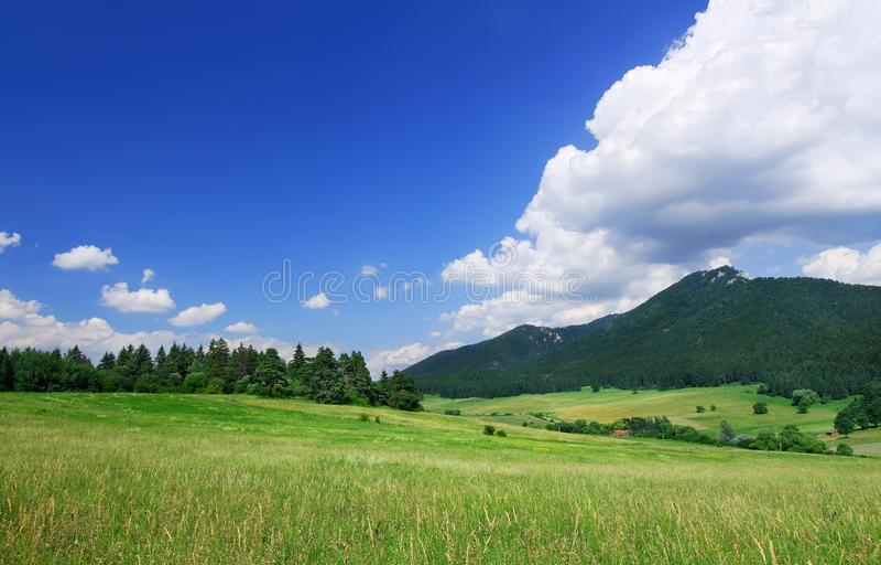Berglandschaft, Ansicht des grünen Feldes unter dem blauen Himmel stockbilder