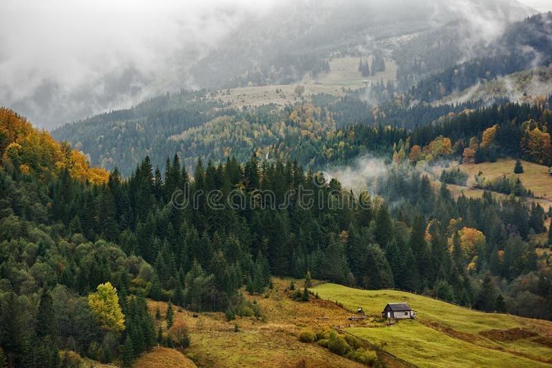 Berglandschaft des schönen nebeligen Morgens in den ukrainischen Karpaten stockbild