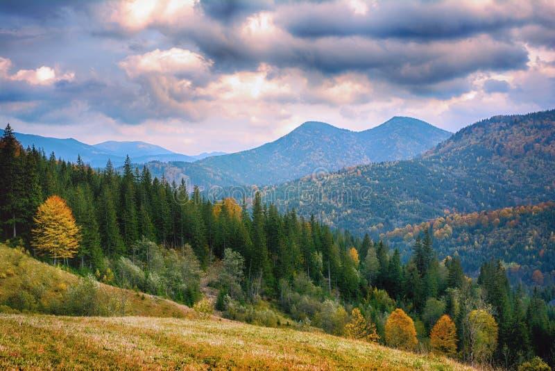 Berglandschaft des schönen Sonnenaufgangs in den ukrainischen Karpaten stockbilder