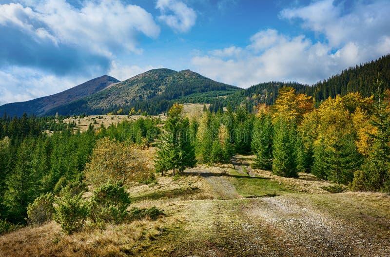 Berglandschaft des schönen sonnigen Tages in den ukrainischen Karpaten lizenzfreie stockfotos