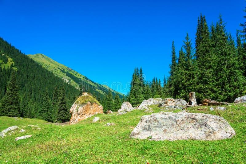 Berglandschaft mit enormen Felsen, Kirgisistan lizenzfreie stockfotografie