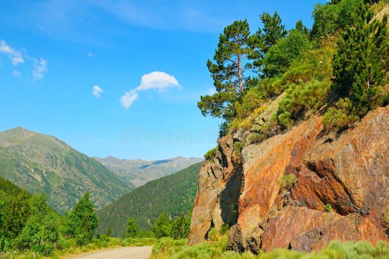 Berglandschaft mit Klippe und Kiefern lizenzfreies stockfoto