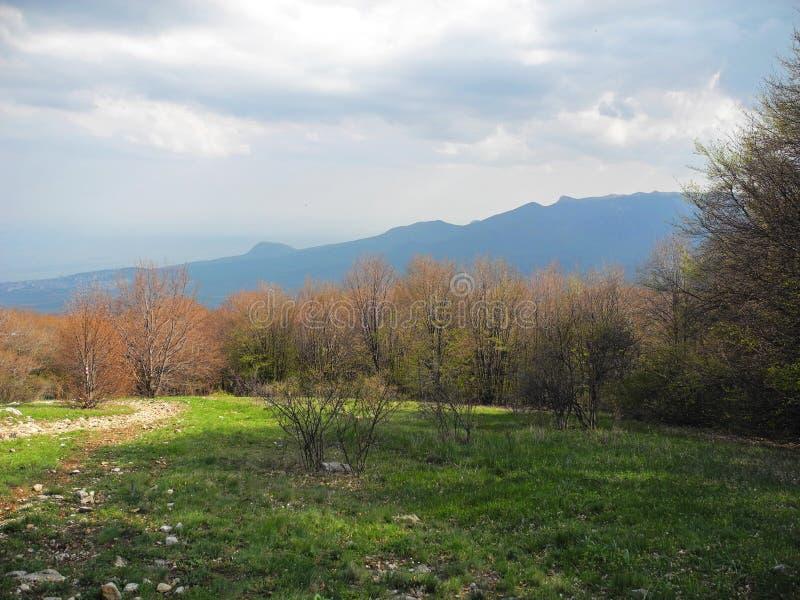 Berglandschaft mit orange Wald und grüner Wiese Gebirgszüge in einem Blaubelag Sommer 2008 lizenzfreie stockfotos
