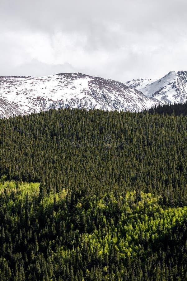 Berglandschaft mt Evans Colorado stockfoto