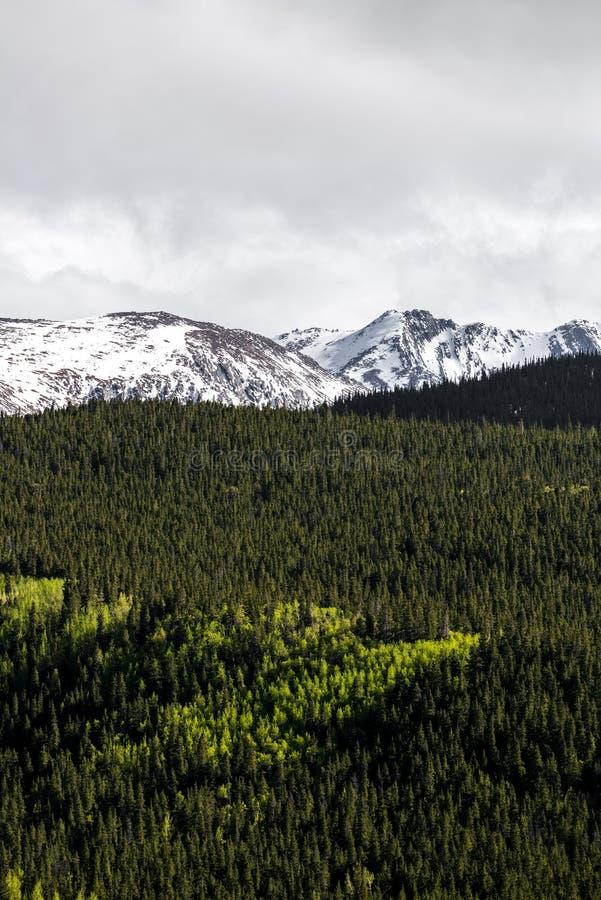 Berglandschaft mt Evans Colorado stockbilder