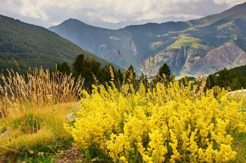 Berglandschaft in Pyrenäen, nahe CAnillo, Andorra lizenzfreie stockfotografie