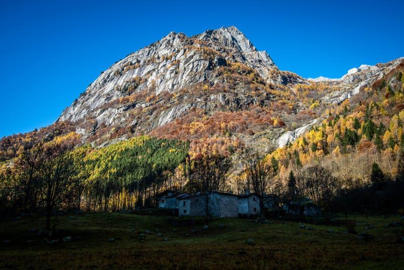 Berglandschaftsherbst Veltlin Italien stockfotos