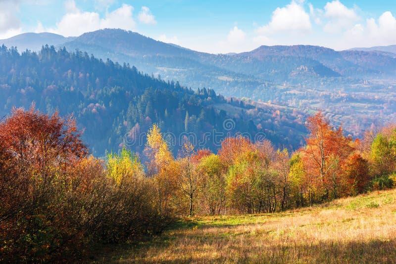 Berglandschap in de herfst in de rouw stock afbeelding