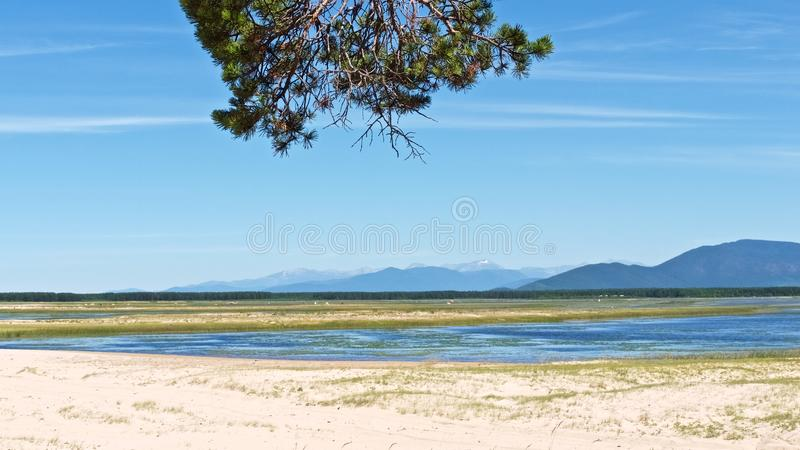 Berglandschap met blauwe rivier en een pijnboomtak stock afbeelding