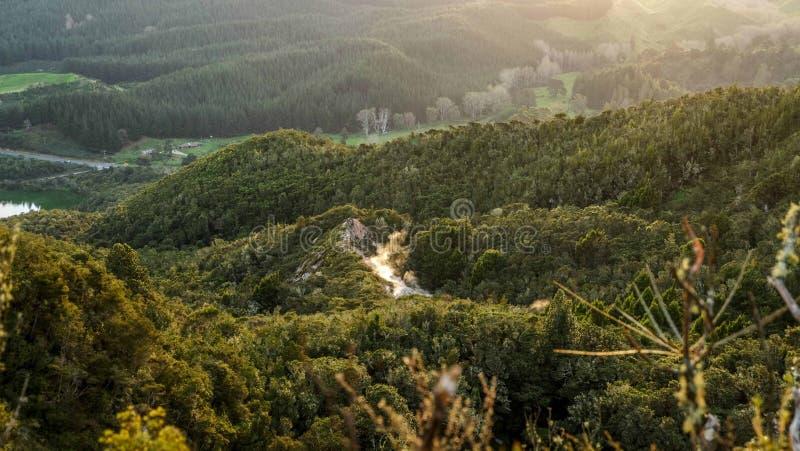Berglandschap met bos en meer, Rotorua, Nieuw Zeeland stock foto
